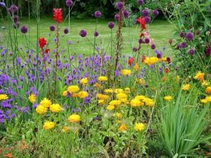 garden public domain 1024px-Colourful_flowerbed_in_the_Italian_garden_of_mount_Stewart_house